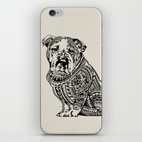english bulldog iPhone & iPod Skins featuring Polynesian English Bulldog by Huebucket