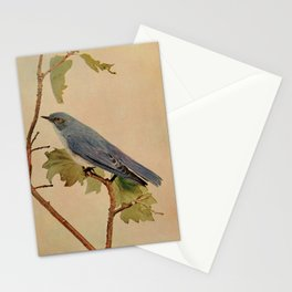 Vintage Print - Birds and Nature (1904) - Mountain Bluebird Stationery Cards