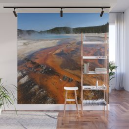 Nature Is Amazing Wall Mural