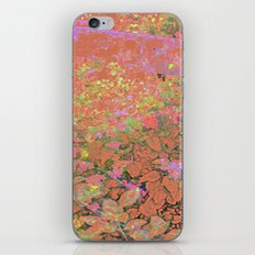 Flower/Fence 2 iPhone & iPod Skin