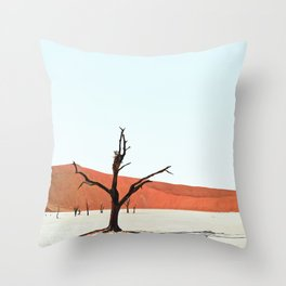 Deadvlei XII Throw Pillow