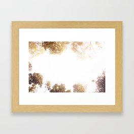 Sky & Woods Framed Art Print