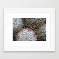 cacti Framed Art Prints featuring Cacti by Ariana Buck