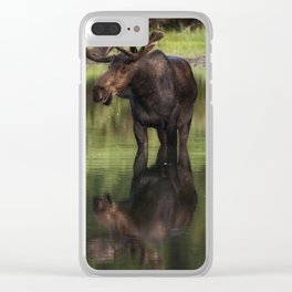 Reflecting Bull Clear iPhone Case