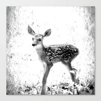 fawn Canvas Prints featuring fawn by 2sweet4words Designs