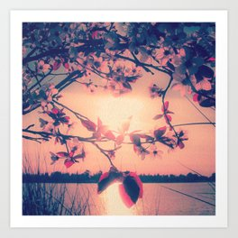 To Love and Be Loved (Spring Pink Cherry Blossoms at Dusk) Art Print