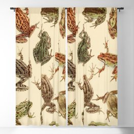 Naturalist Frogs Blackout Curtain