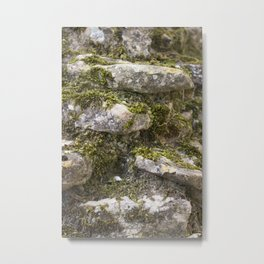 Old English Stone with Moss Metal Print