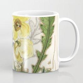 Flower meconopsis nepalensis Coffee Mug
