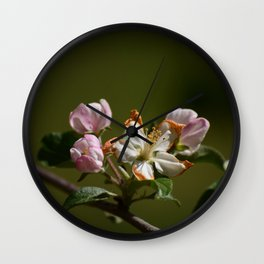 Wilting Apple Blossom Wall Clock