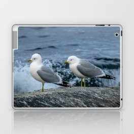 Seagulls, Norway Laptop & iPad Skin