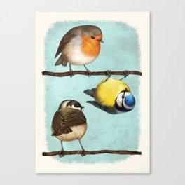 Three Little Birbs - Blue Canvas Print