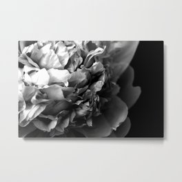 Black and White Summer Peony Metal Print