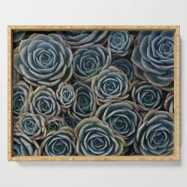 Teal Rosettes Serving Tray