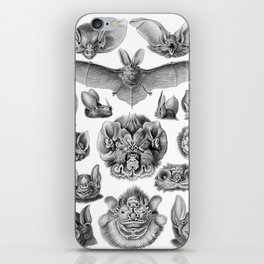 Bats iPhone Skin