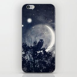A Night With Venus and Jupiter iPhone Skin