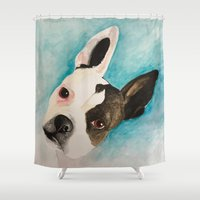 boston terrier Shower Curtains featuring Boston Terrier  by MeggaChurch