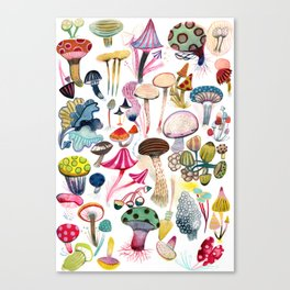 Mushroom Collection - b r i g h t s Canvas Print