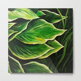 leaf buds Metal Print