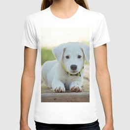 Poppy | Chiot T-shirt