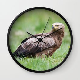 Lesser Spotted Eagle Wall Clock