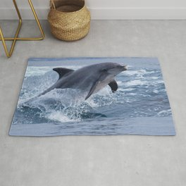 Bottenose dolphin Rug