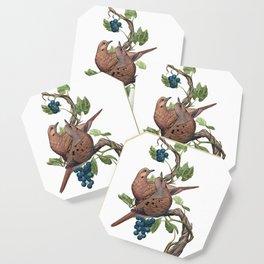 Mourning Doves Coaster