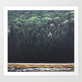 Along the Tim, Algonquin Park Art Print