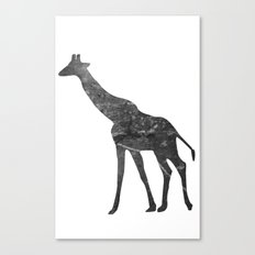 Giraffe (The Living Things Series) Canvas Print
