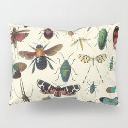 Lovely Butterfly Pillow Sham