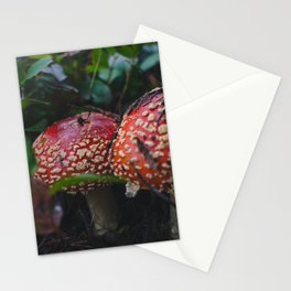 Fly Agaric Mushroom Stationery Cards