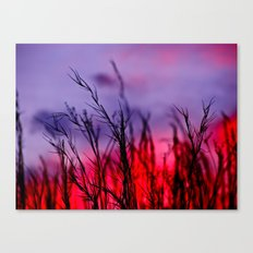 Colors to the West Canvas Print