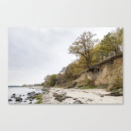 Along The Cliff On Baltic Sea Canvas Print