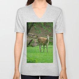Soft eyes - deer in a clearing Unisex V-Neck