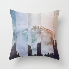 Fractions A38 Throw Pillow