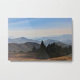 Grassy Ridge Bald, NC Metal Print