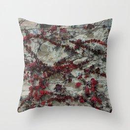 Edera - Castello Banfi - Tuscany Throw Pillow
