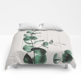 Eucalyptus Comforters