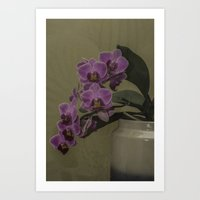 orchid Art Prints featuring Orchid by Steve Purnell