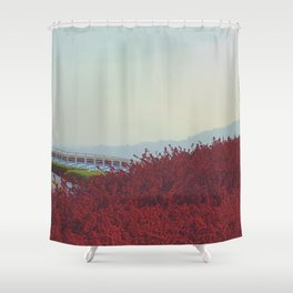 Meeting of Planes Shower Curtain