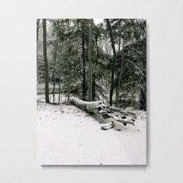 Beautifully Dead Metal Print