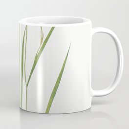 Iris Prismatica from The Genus Iris (1913) by William Rickatson Dykes Coffee Mug