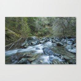 FLOW - Cazadero, California Canvas Print