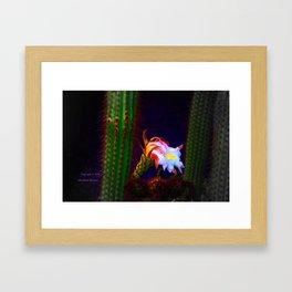 """Cactus Flower At Sunset #105"" Photograph Framed Art Print"