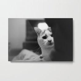 Cat peeking over owner's shoulder - black & white Metal Print