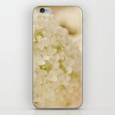 Vintage Nature Botanical White Hydrangea Flower Head iPhone & iPod Skin