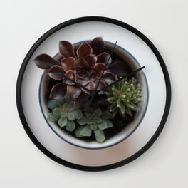 Succulents in Classic Chrome 01 Wall Clock