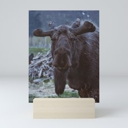 Friendly Moose Mini Art Print