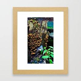 Tree Stump Mushroom Print Framed Art Print
