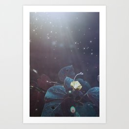 Elixir Blue Fairy Lights Art Print
